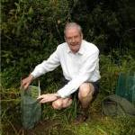Planting a seedling in 2011