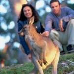 wildlife tourism experiences can touch deep emtions